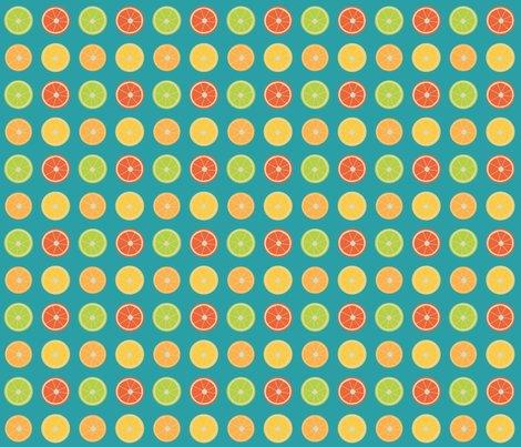 Rcitrus-dots.ai_shop_preview
