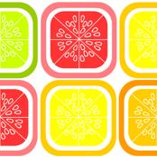 Citrus Squares (White)