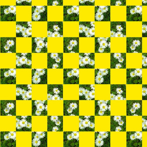 Picnic Rug Yellow
