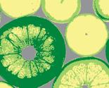 Rrrrcitrus_fruits_ed_ed_thumb