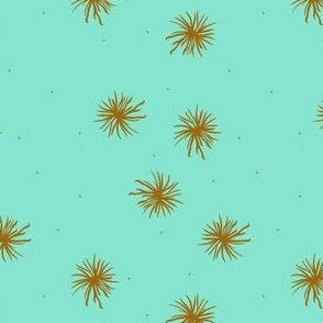 puffballs pistache
