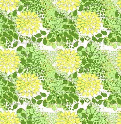 Meyer Lemons and Limes Seeds with Meyer Lemon's flower