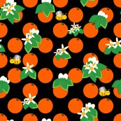 Orange_blossom_8x8_shop_thumb