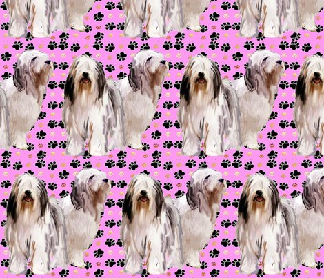 Rbearded_collies_and_paw_prints_pink_shop_preview