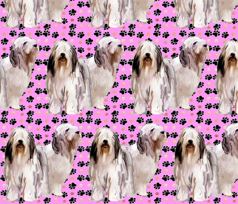 bearded_collies on pink background fabric by dogdaze_ on Spoonflower - custom fabric