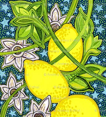 When Life Comes Up Lemons