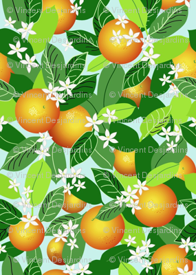 Citrus Abundance 1
