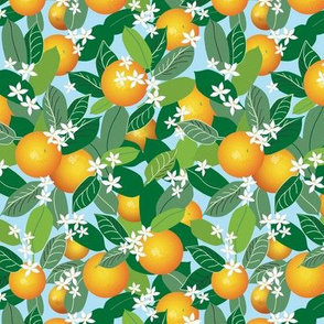 Citrus Abundance 2