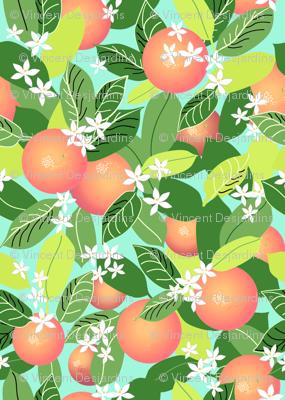 Citrus Abundance 4