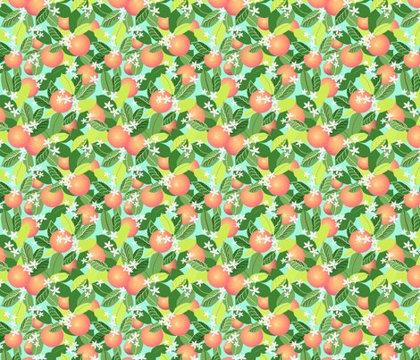 Citrus_leaves_new_leaves_sky_shop_preview