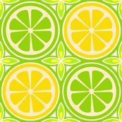 Rcitrus-design1-02_shop_thumb