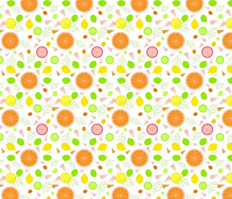 Citrus_slices_illustrator_white_adj2_ed_shop_preview