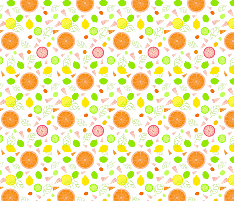 Citrus Slices Illustrator Version fabric by vinpauld on Spoonflower - custom fabric