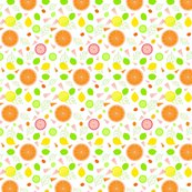 Citrus_slices_illustrator_white_adj2_ed_shop_thumb