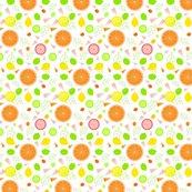 Citrus_slices_illustrator_white_adj2_ed_shop_thumb