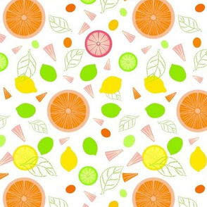 Citrus Slices Illustrator Version