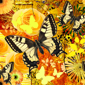 Butterflies in Yellow