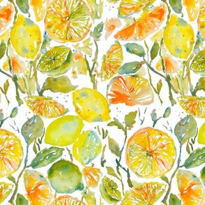 Citrus_Garden