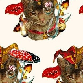 catmushroom