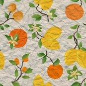Rrrcitrus_washi-01_shop_thumb