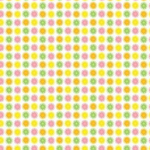 tiny citrus3