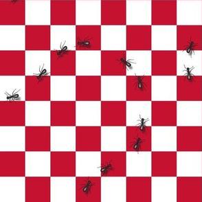 ants3