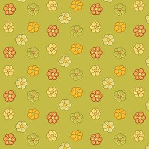 Citrus_flowers
