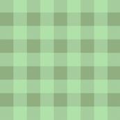Isabelle's Checker Vest