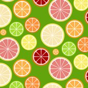 Citrus_slices_mod_lemon_on_green_shop_thumb