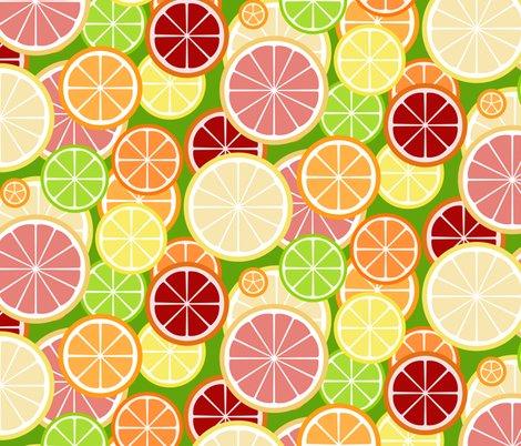 Citrus_slice_buffet_on_green_mod_lemon_shop_preview