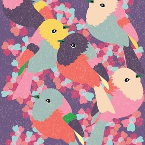 Little Birds - 2