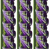 Rf1_violet_chartreuse_swag_ed_shop_thumb