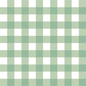 Rraqua_gingham_shop_thumb