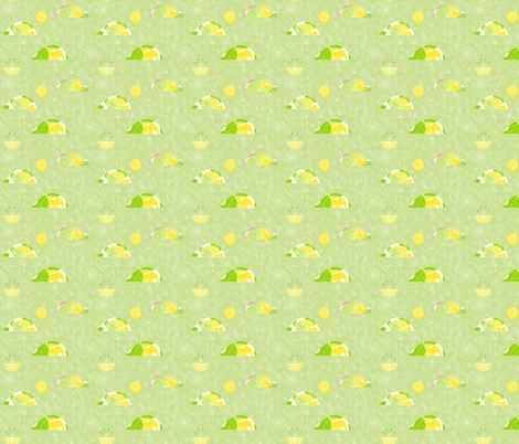 lemon_lime_1