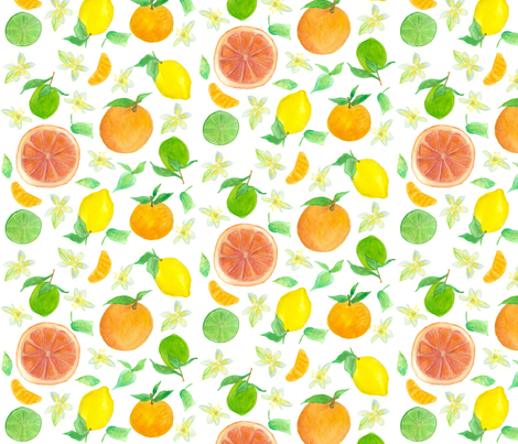 Citrus Fruits fabric by countrygarden on Spoonflower - custom fabric