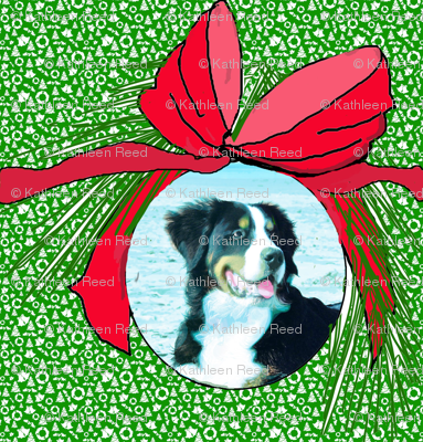 BERNESE_MOUNTAIN_DOG_CHRISTMAS2