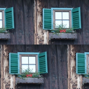 Window Hallstatt Austria