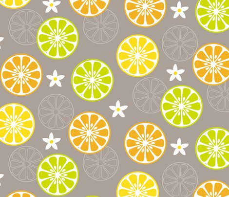 Rrorange-orange-lemon-lime_shop_preview