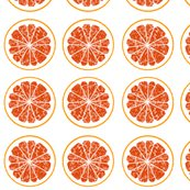 2184486_blood-orange17py_shop_thumb