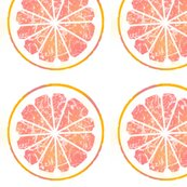 Rgrapefruit-9py_shop_thumb