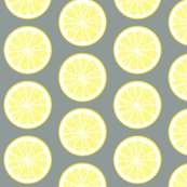 Rlemon-18py-grey_shop_thumb