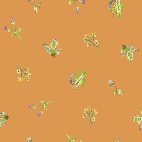 welsh-coast-flora_rock-crab fabric by bee&lotus on Spoonflower - custom fabric