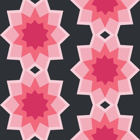 Starburst_flower_bgblack.ai_shop_preview