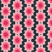 Starburst_flower_bgblack.ai_shop_thumb