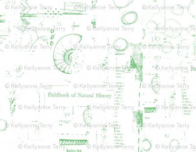 Fieldbook of Natural History