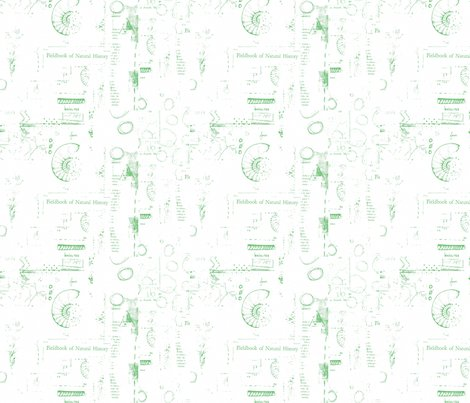 Rfieldbook_of_natural_history_green_shop_preview