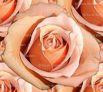 Romantic Roses ~Bright ~ Large