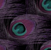 2013_peacock_redux_base_nicole_guest2_shop_thumb