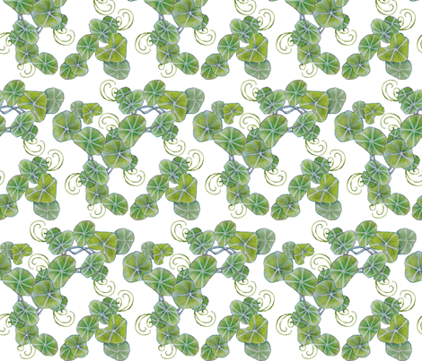 underbrush nasturtiums fabric by golders on Spoonflower - custom fabric