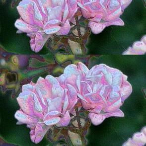Photograph 3409 enamel roses